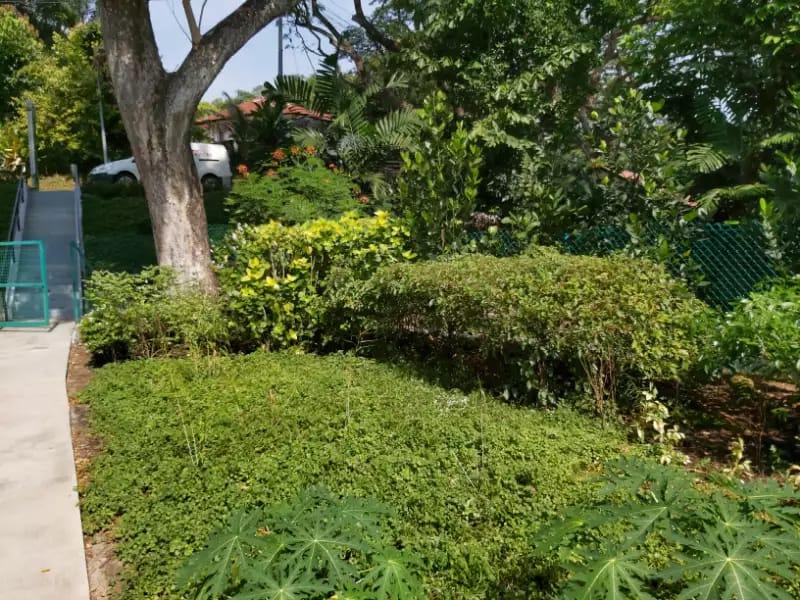 public path horticulture